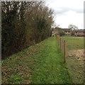 TL1460 : Path towards Staploe by Dave Thompson