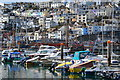 SX9256 : View across Brixham harbour by David Martin
