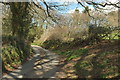 SX1660 : Lane near Higher Clowne by Derek Harper