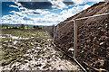 SP2754 : Large earth bank on Ettington Park Estate by David P Howard
