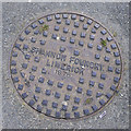 O2717 : Manhole cover, Bray by Rossographer