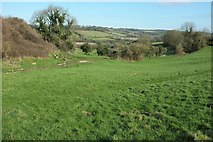 ST7258 : View near White Ox Mead Farm by Derek Harper