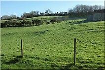 ST7258 : Pasture by White Ox Mead Farm by Derek Harper