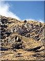NN3540 : Southwest ridge of Beinn a' Chuirn by Alan Reid