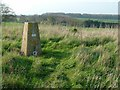 SK9000 : Glaston trigpoint by Alan Murray-Rust