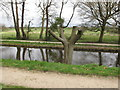 SD4615 : Pollarded tree by canal, Rufford Old Hall by David Hawgood