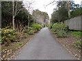 SZ0790 : Cherry Tree Walk - West Overcliff Drive by Betty Longbottom