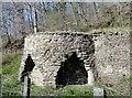 NZ0548 : Old lime kilns at Comb Bridges by Robert Graham