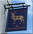 TQ2789 : Sign for the Bald Faced Stag by JThomas