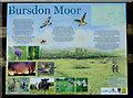 SS2619 : Information Board on Bursdon Moor, Devon by Roger  Kidd