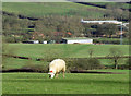 SK8102 : A collection of farms near to Branston-in-Rutland by Andrew Tatlow