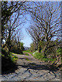 SS2217 : Track and public footpath south of Mead, Devon by Roger  Kidd