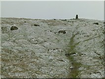 SO5977 : Titterstone Clee trig point by Alan Murray-Rust