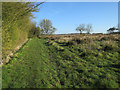 TL6556 : Stour Valley Path by Hugh Venables