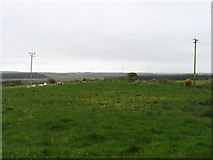 R0162 : Country west of Cooraclare by David Purchase