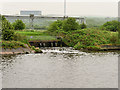 SJ4677 : Manchester Ship Canal, Drainage at Ince Marshes by David Dixon