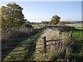 NT7825 : Field access by Richard Webb