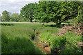 TQ0663 : Farmland beside the River Wey by Alan Hunt