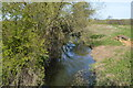 TL0247 : Small channel of the Great Ouse by N Chadwick