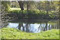 TL0248 : River Great Ouse, Great Denham Country Park by N Chadwick