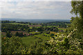 SJ4953 : View down to Brown Knowl from the Sandstone Trail by Christopher Hilton