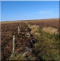 ND1646 : Drainage channel and former fence line on moorland near Tacher, Caithness by Claire Pegrum