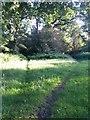 SZ0796 : Kinson: footpath E46 enters Duke�s Coppice by Chris Downer