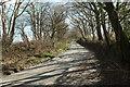 SX1264 : Lane to Greymare Farm by Derek Harper