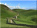 NY7124 : Track south of Pennine Way by Andrew Curtis