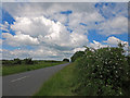 TF1003 : Flowering hedgerows near Ufford, Peterborough by Dylan Moore