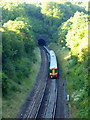 TQ2953 : Gatwick Express leaving Merstham Tunnel : Week 27