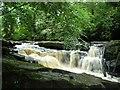 R7260 : Below the Clare Glens waterfalls : Week 26