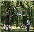 TQ3092 : Blowing Bubbles in Broomfield Park, London N13 by Christine Matthews