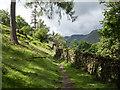 NY3815 : Path alongside wall by Trevor Littlewood