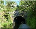NS8878 : The south portal of the Falkirk Tunnel by Mat Fascione