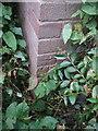 SJ8603 : OS benchmark - Codsall, 71 Wilkes Road by Richard Law