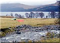 NN4484 : Camp by the burn at Moy Woods by Alan Reid