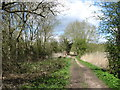 SP5201 : The Thames Path near Fiddler's Elbow by David Purchase