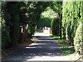 SK3438 : Slack Lane by Ian Calderwood
