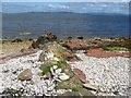 NR9452 : Dyke intruding Permian strata by Jonathan Wilkins