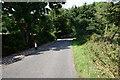 SE2406 : Cat Hill Lane towards Gunthwaite Bridge by Ian S