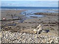 NJ2170 : Stream on Lossiemouth West Beach by Oliver Dixon