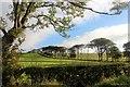 NS2147 : Yonderton farmland : Week 38