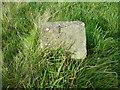 SE0236 : Trail marker stone No.5, Penistone Hill, Haworth by Humphrey Bolton