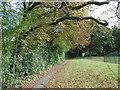 TQ2292 : Footpath through Mill Hill School by Marathon