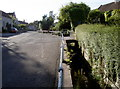 ST6660 : The Conygre Brook in The Street by Neil Owen