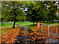 H4573 : Fallen leaves, The Grange, Omagh by Kenneth  Allen