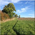 SP7434 : Paths around Thornborough by Dave Thompson
