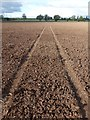 SK6937 : Tractor lines in a ploughed field : Week 41