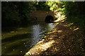SP1793 : Birmingham & Fazeley Canal, Curdworth by Stephen McKay